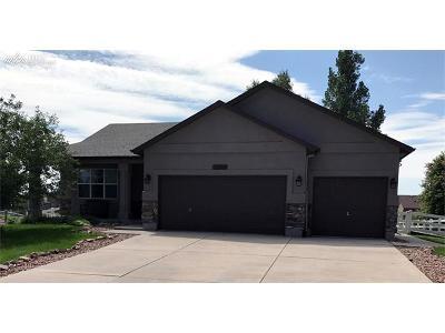 Peyton Single Family Home For Sale: 12369 Tex Tan Road