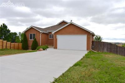 Colorado Springs Single Family Home For Sale: 9499 Summer Meadows Drive