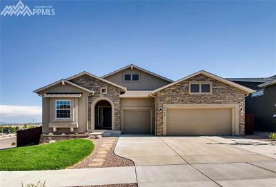 El Paso County Single Family Home For Sale: 3474 Wind Waker Way