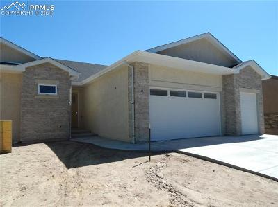 Colorado Springs Single Family Home For Sale: 3227 Viridian Point