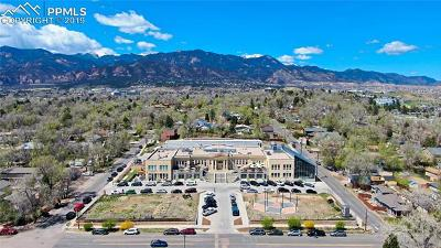 Colorado Springs Residential Income For Sale: 11 Dorchester Drive