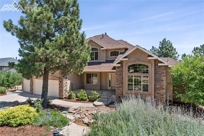 Colorado Springs Single Family Home For Sale: 5925 Buttermere Drive