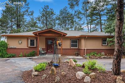 Colorado Springs Single Family Home For Sale: 4515 Ford Drive