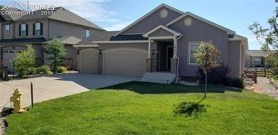 Single Family Home Under Contract - Showing: 10223 Capital Peak Way