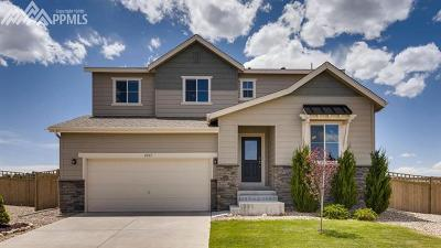 Castle Rock Single Family Home For Sale: 4367 Portmeirion Court