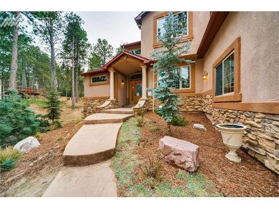 Colorado Springs Single Family Home For Sale: 17766 Sawmill Road