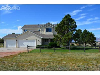 Colorado Springs Single Family Home For Sale: 7075 Silver Ponds Heights