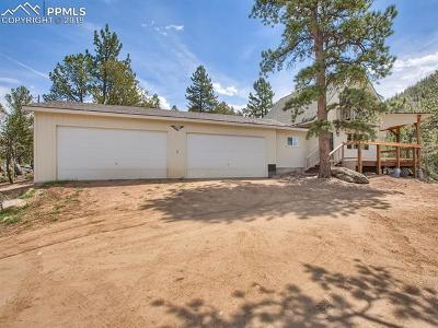 Lake George Single Family Home For Sale: 7262 County 92 Road