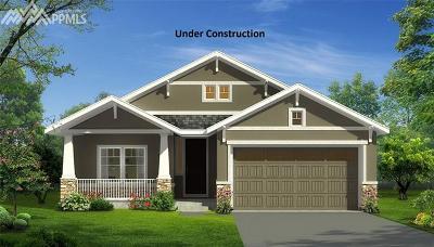 Colorado Springs Single Family Home For Sale: 7600 Alpine Daisy Drive