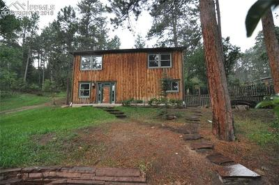 Palmer Lake Single Family Home For Sale: 171 Shady Lane