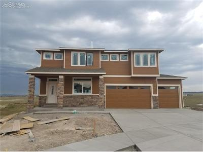 Colorado Springs Single Family Home For Sale: 6570 Stonefly Drive
