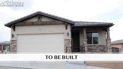 Colorado Springs Condo/Townhouse For Sale: 1989 Lone Willow View