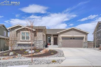 Colorado Springs Single Family Home For Sale: 4458 Outlook Ridge Trail