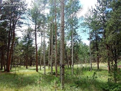 Woodland Park Residential Lots & Land For Sale: 681 Skyline Drive