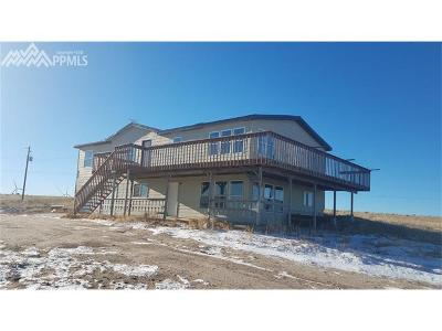 Calhan Single Family Home For Sale: 29795 Paint Mine Road