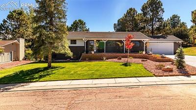 Colorado Springs Single Family Home For Sale: 475 N Wintery Circle