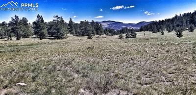 Guffey Residential Lots & Land For Sale: Tbd Coyote Lane