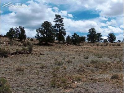 Residential Lots & Land For Sale: 234 Arapahoe Trail