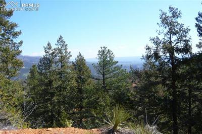 Manitou Springs Residential Lots & Land For Sale: 570 Day Spring View