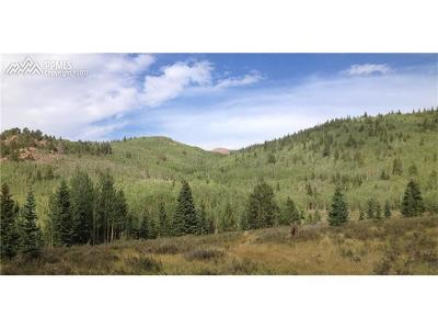 Cripple Creek Residential Lots & Land For Sale: 0000 S Highway 67 Highway
