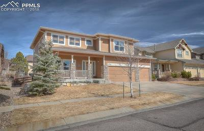 Colorado Springs Single Family Home For Sale: 5744 Flicka Drive