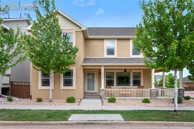 Colorado Springs Single Family Home For Sale: 1506 Gold Hill Mesa Drive
