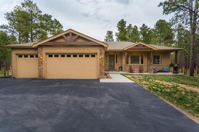 Single Family Home For Sale: 10936 Silver Mountain Point