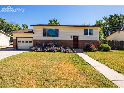Colorado Springs Single Family Home For Sale: 1011 Turley Drive