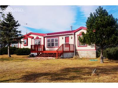 Calhan Single Family Home For Sale: 11220 Ramah Highway