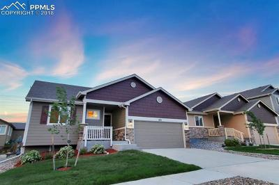 Single Family Home For Sale: 874 Deschutes Drive