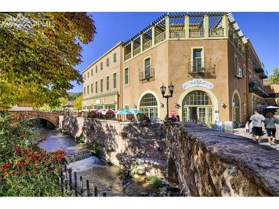 Manitou Springs Condo/Townhouse For Sale: 934 Manitou Avenue #205