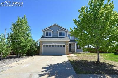Colorado Springs Single Family Home For Sale: 8201 Andrus Drive