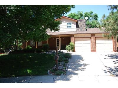 Colorado Springs Single Family Home For Sale: 1318 Kern Circle