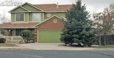 Colorado Springs Single Family Home For Sale: 5974 Treeledge Drive