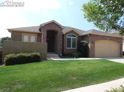 Colorado Springs Single Family Home For Sale: 7316 Centennial Glen Drive