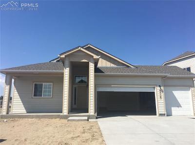 Colorado Springs CO Single Family Home For Sale: $300,495