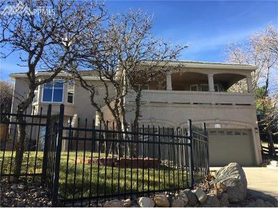 Colorado Springs Single Family Home For Sale: 5115 Broadmoor Bluffs Drive
