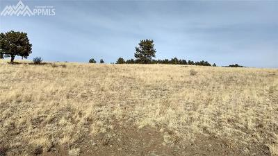 Guffey Residential Lots & Land For Sale: 4454 County 71 Road