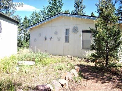 Cripple Creek Single Family Home For Sale: 433 Bennett Drive