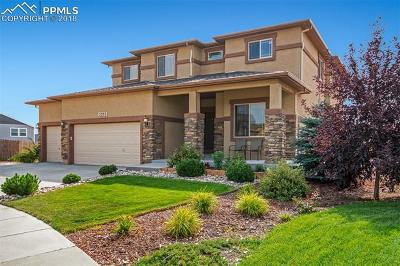 Colorado Springs Single Family Home For Sale: 5293 Imogene Pass Place