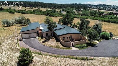 Colorado Springs Single Family Home For Sale: 15590 Castlegate Court