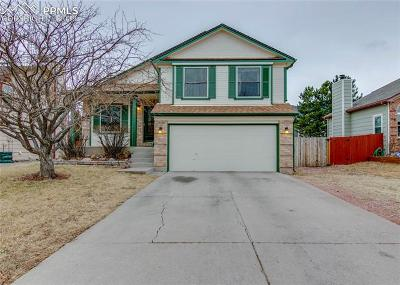 Colorado Springs Single Family Home For Sale: 1265 Canoe Creek Drive