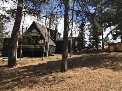 Woodland Park Single Family Home For Sale: 845 Markus Road