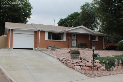 Colorado Springs Single Family Home For Sale: 4124 Fitzpatrick Drive