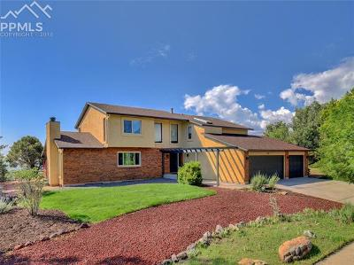 Colorado Springs Single Family Home For Sale: 1345 Winding Ridge Terrace