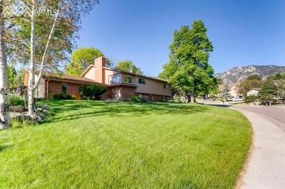 Colorado Springs Single Family Home For Sale: 560 Thames Drive