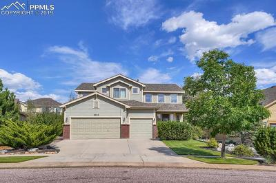 Colorado Springs Single Family Home For Sale: 8845 Rory Creek Street