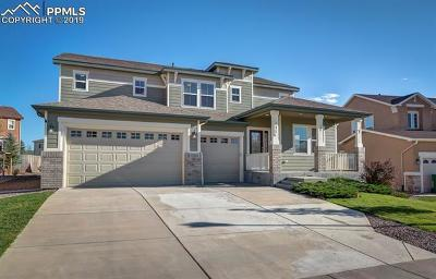 Colorado Springs Single Family Home For Sale: 737 Airman Lane