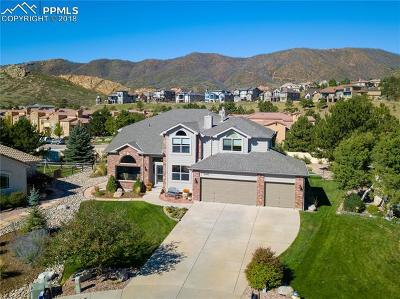 Colorado Springs Single Family Home For Sale: 2405 Regal View Court
