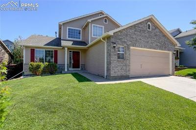 Castle Rock Single Family Home For Sale: 951 Quarterhorse Trail